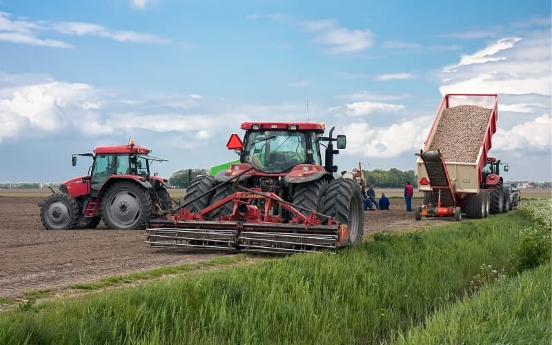 What is the netherlands best at - Agriculture and Horticulture